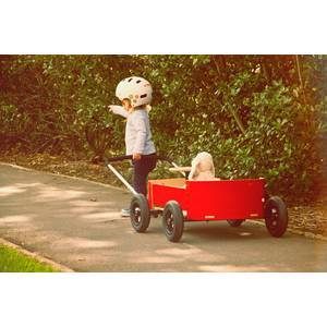 Chariot Wagon en bois 3 en 1
