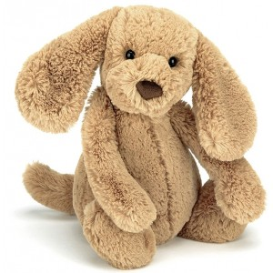 Peluche chiot Bashful Puppy Toffee (18 cm) Jellycat