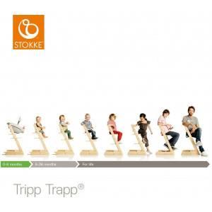 Chaise haute  enfant évolutif tripp trapp en bois Noyer Stokke