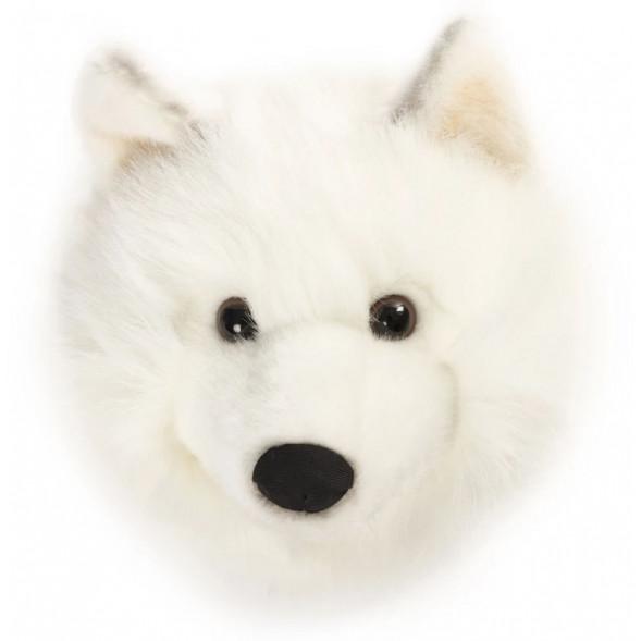 Trophée tête Lucy le Loup Blanc