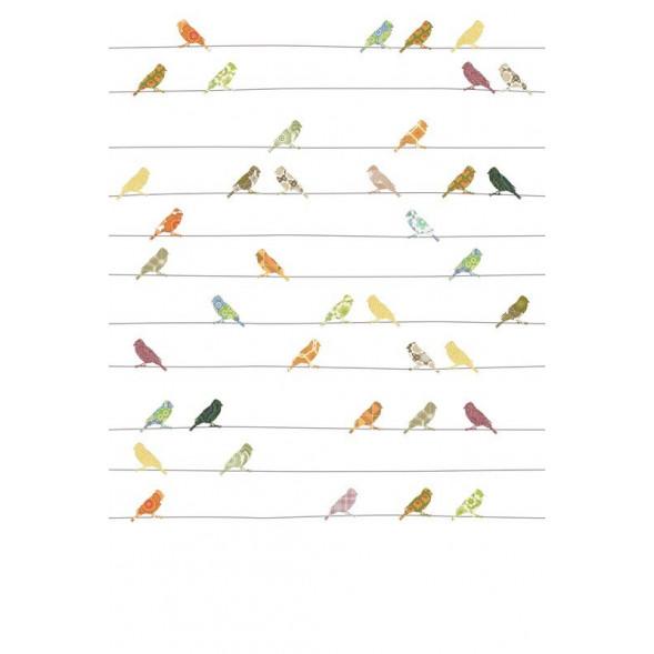 """Papier peint """"Oiseaux Muliticolor"""" (200x300)"""