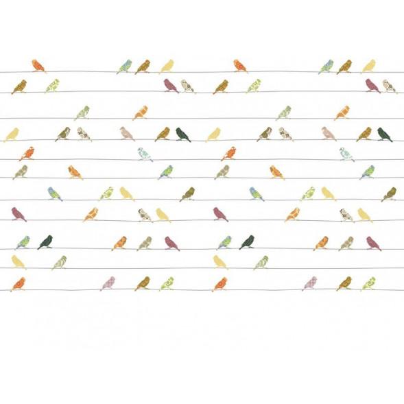 """Papier peint """"Oiseaux Muliticolor"""" (400x300)"""