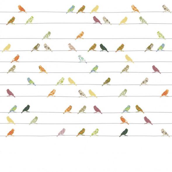 """Papier peint """"Oiseaux Muliticolor"""" (300x300)"""